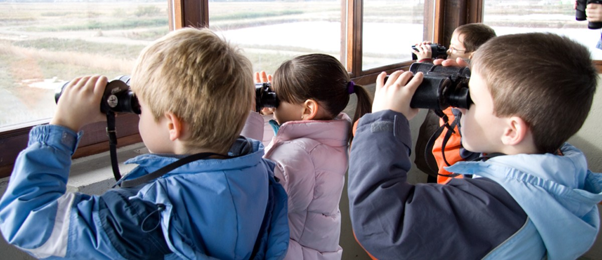 Fotos Observatorios