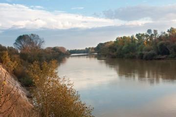 Soto Ebro Arguedas 2