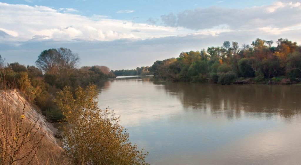 Soto-Ebro-Arguedas-5-2