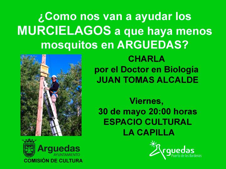 Murcielagos-Arguedas
