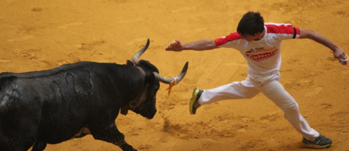 Excursión a Zaragoza Casta Brava