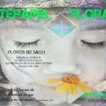 Datura-Arguedas-Terapia-Floral
