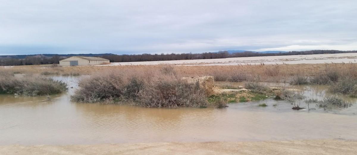 Salida-Ebro-Arguedas-5