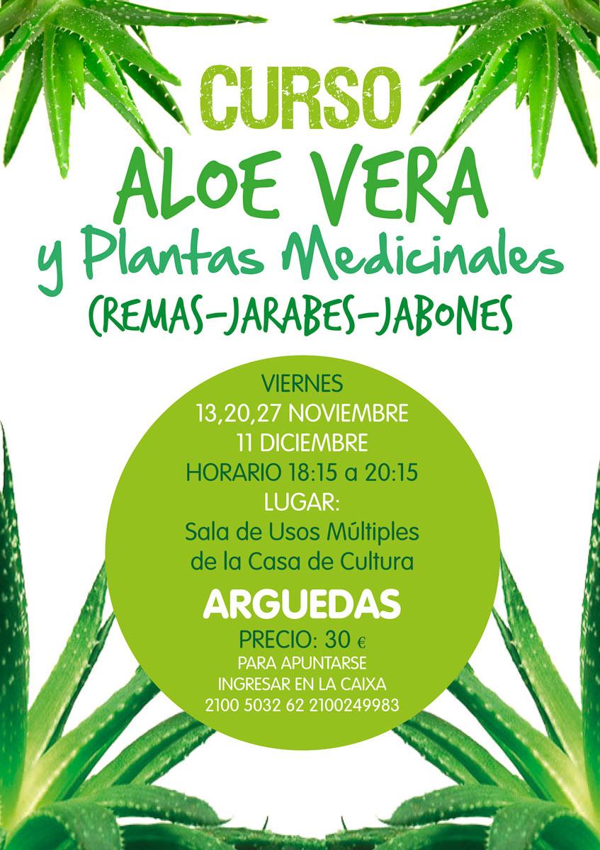 Curso de aloe vera y plantas medicinales arguedas puerta de las bardenas y sendaviva - Planta de aloe vera precio ...