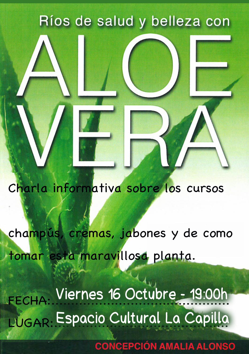 Aloe Vera Arguedas