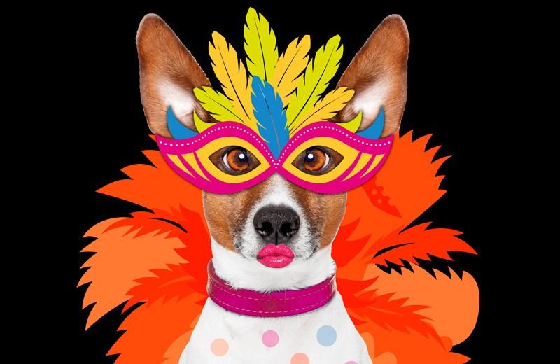 Carnaval-Arguedas-2016-Destacada