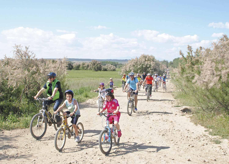 Dia-bici-Arguedas-2016-231-DSC_0731