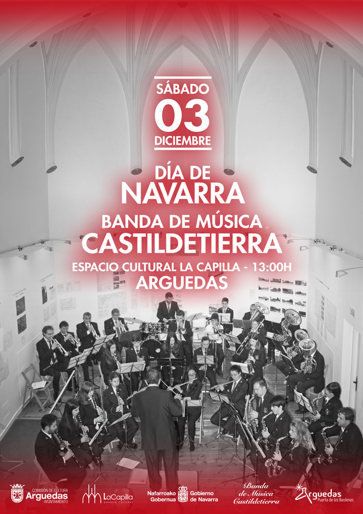 banda-arguedas-dia-navarra-cartel-2016