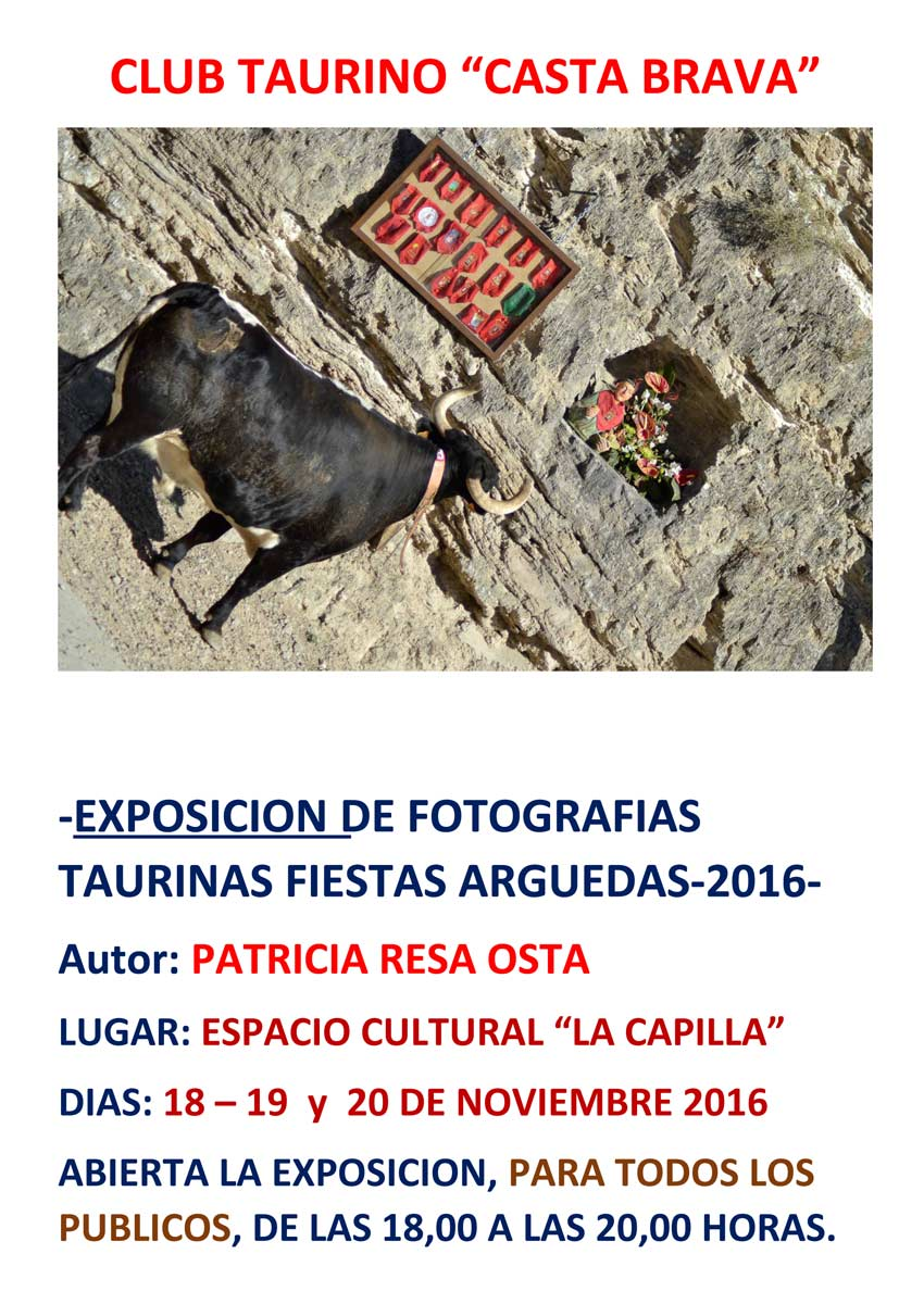 exposicion-taurina-arguedas-2016-cartel