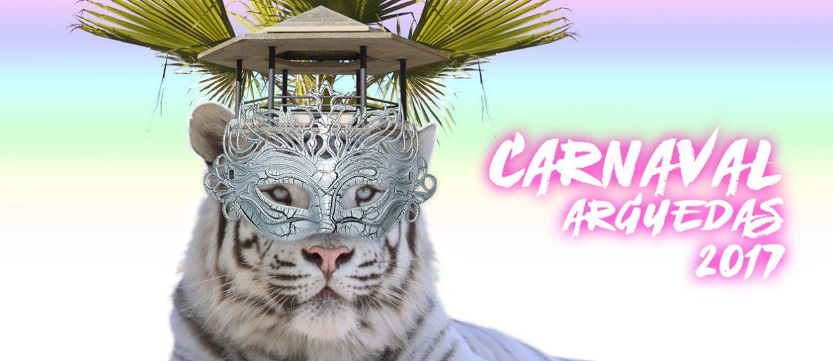 Carnaval-Arguedas-2017-Slider