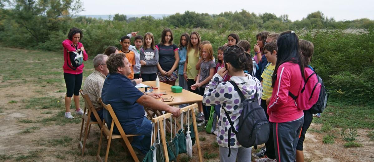 Colegio Público Sancho Ramírez