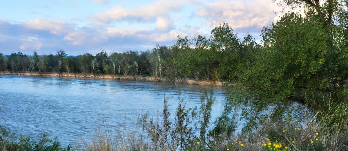 Soto Ebro Arguedas 5