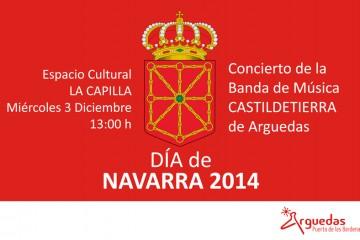 Arguedas-Dia-de-Navarra-2014