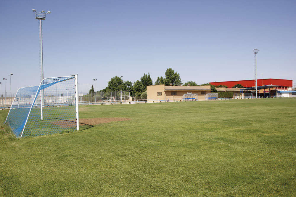66.-Campo-Salobral