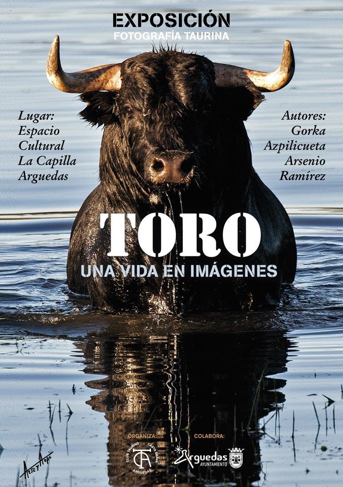 Exposicion-Toro-Mayo-Arguedas-2018-1