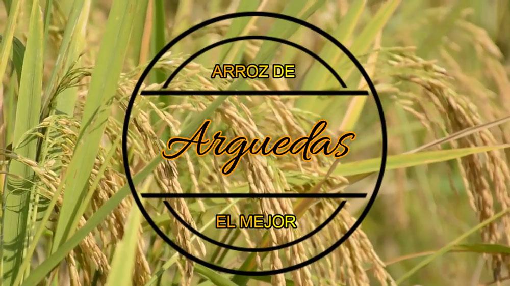 Proyecto-Arroz-Colegio-2019