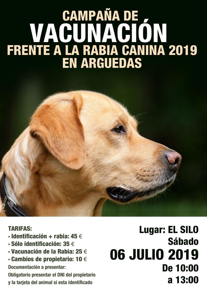 Rabia-Perros-Arguedas-2019