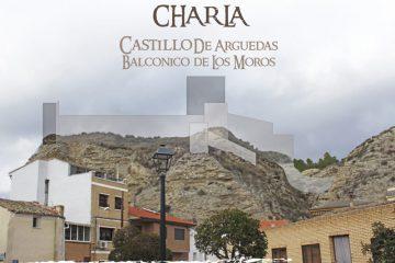 Charla-Castillo-de-Arguedas-Redes-2019