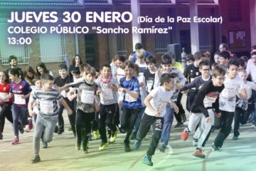 Carrera-Solidaria-Colegio-Arguedas-WEB-2020