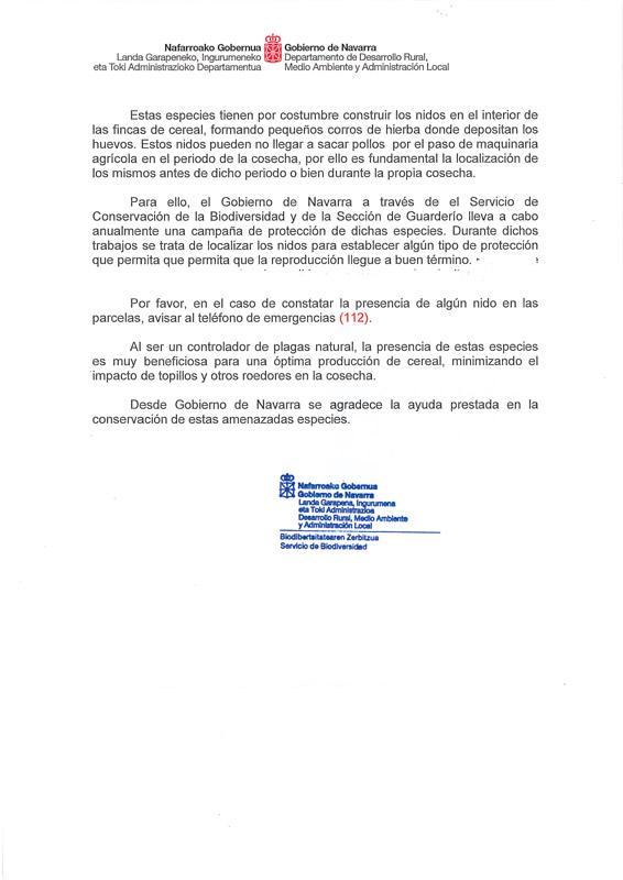 Aguilucho-Navarra-2020-2