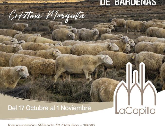 La-Capilla-Cristina-Mesquita-01.10.2020-WEB